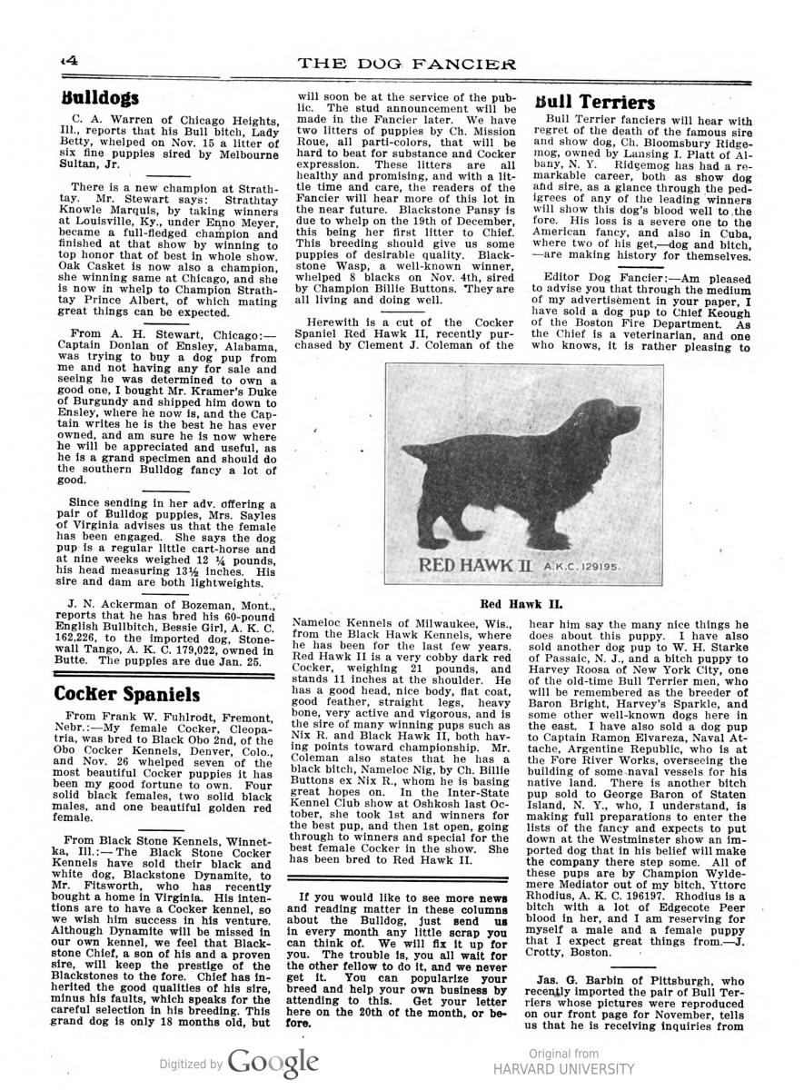 The Dog Fancier Vol 25