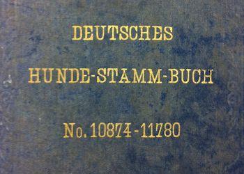 DHStB – Studbook Germany – Year, Volume, Registrations