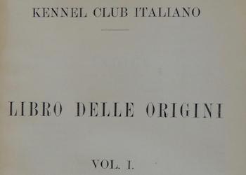KCI/LOI/LIR – Stud book Italy – Year, Volume, Registrations