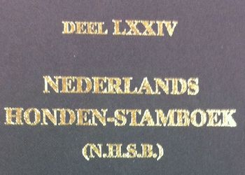 NHSB – Studbook Netherlands – Year, Volume, Registrations