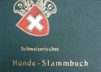SHSB – Swiss Stud Book online