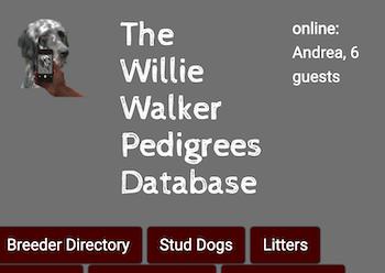 The Willie Walker Pedigrees Database – English Setter