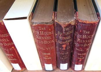University of Maine – Fogler Library