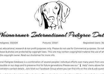 The Weimaraner International Pedigree Database