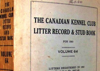 CKC – Stud book Canada – Year, Volume, Registrations