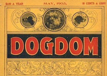 Dogdom – An illustrated monthly dog magazine